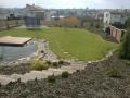 Zahrady na klíč, realizace zahrad, zahradnictví, údržba Brno-venkov