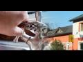 Prodejna Voda – topení - plyn - Světlá nad Sázavou