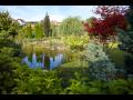 Výstavba zahradních jezírek, jezer, zahradnický servis, realizace, zahradnictví