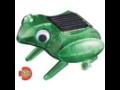 Solární žába