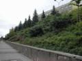 Komplexn� zahradnick� pr�ce a realizace park� pro obce i firmy