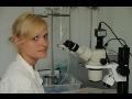 Parazitologická laboratoř provádí diagnostiku parazitů u všech druhů zvířat
