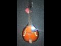 strunné hudební nástroje - mandolíny