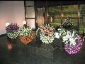 Pohřební služba Memory in Memory