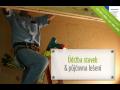 SVJ servis pro bytové domy Plzeň