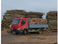 Sale of solid fuels, sawn and chopped fuelwood, logs | The Czech Republic