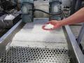 Výroba plastový regranulát, kompaund, recyklace plastového odpadu
