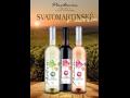 Svatomartinské víno 2015 - tradice, kterou si hned oblíbíte | Velké Pavlovice