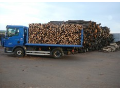 Fuel wood - shortened and chopped, supply, wood sale Znojmo, the Czech Republic