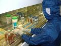 Jaderný výzkum a vývoj