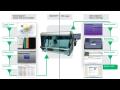 Automatické systémy pre určenie HLA - HISTO SPOT
