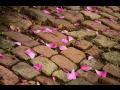 Rekonstrukce komunikac� a oprava v�tluk� Praha - spojujeme praskl� spoje asfalt�