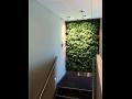 Vegetační nebo vertikální stěna.