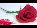 Smuteční služby Praha 9 – zajištění pohřbu pro bližního, kompletní pohřební služby