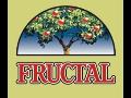 Ovocné džusy FRUCTAL bez cukru, zeleninové šťávy ze Slovinska - velkoobchod Zlín