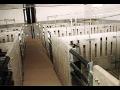 Betonové ohradníky pro prasata od firmy ATRO - BETON, spol. s r. o. , Klatovy