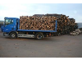 Prodej palivového dřeva Znojmo, Moravský Krumlov
