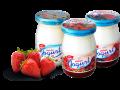 Lahodn� Jiho�esk� jogurty ve skle od AGRO-LA, Jind�ich�v Hradec
