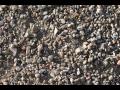 Recyklovaný, tříděný stavební odpad, prodej stavebního recyklátu