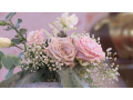 Snížek - reportáž ze svatby