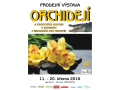 V�stava orchidej� �esk� Bud�jovice � zav�tejte do exotiky v zim�