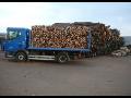 Palivové dřevo, prodej, dodávka, dřeviny buku, dubu, habru, břízy, smrku, borovice Moravské Budějovice