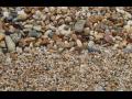 Prodej písku a štěrku Opava