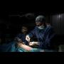 Veterinární laparoskopické operace, 3D laparoskopie, ultrazvukové vyšetření