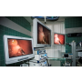 veterin�rn� 3D laparoskopick� vy�et�en�