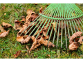 Jarní a podzimní vyhrabávání trávníků včetně listí, mechu, odumřelých částí květin | Praha