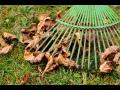 Jarn� a podzimn� vyhrab�v�n� tr�vn�k� v�etn� list�, mechu, odum�el�ch ��st� kv�tin | Praha