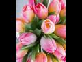 Speciální hromadné slevy pro zájezdy na jarní zahradnické trhy Flora