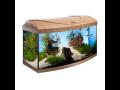 E-shop s akvaristickými potřebami, akvária, terária, rostliny, technika a krmení pro ryby