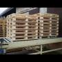Dřevěné palety pro skladování a přepravu zboží, europalety - výkup a ...