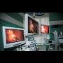 Veterinární klinika, laparoskopické kastrace, chirurgické ošetření