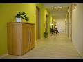 Akupunktura, chiropraxe, fyzioterapie, podiatrie, mas�e, p��rodn� medic�na a rehabilitace Praha 8