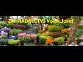 Prodej květin, semen, řezaných květin, sazenic a hnojiv Příbram - zahradnictví Volák