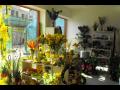 Kv�tin��stv�, floristika Zl�n