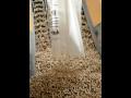 Výroba a prodej dřevěných pelet ve velikostech 6mm a 8mm