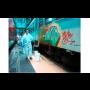 AGS Gel – spolehlivé odstranění graffitů a barev ze znečistěných povrchů a dopravních prostředků