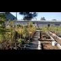 Zahradnictv� s velk�m v�b�rem kv�tin, stromk� i ke��
