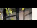 Rolovací sítě proti hmyzu do dveří i oken, okenní rolety