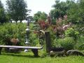 Prodej, pěstování bylinek, řezané byliny, kontejnerované, výrobky z bylin, přírodní zahrada, Slavonice