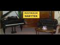 Bazarov� prodej rustik�ln�ho a holandsk�ho n�bytku Vyso�ina