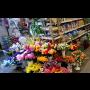 Floristick� pot�eby a pom�cky pro v�robu v�nc�, kv�tinov�ch vazeb a v�zdob