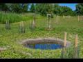 Projekty pro revitalizaci mal�ch vodn�ch ploch-t�n�, mok�ady, rybn�ky
