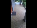 kamenná podlaha - z mramorového kamene