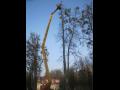 Bezpečnostní ořezy, vazby, kácení stromů pro obce, města