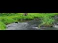 Hospoda�en� s de��ovou vodou, de��ov� kanalizace - modr� �spor�m