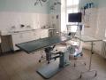 Profesionální veterinář - kastrace feny a psa z chovatelských i zdravotních důvodů